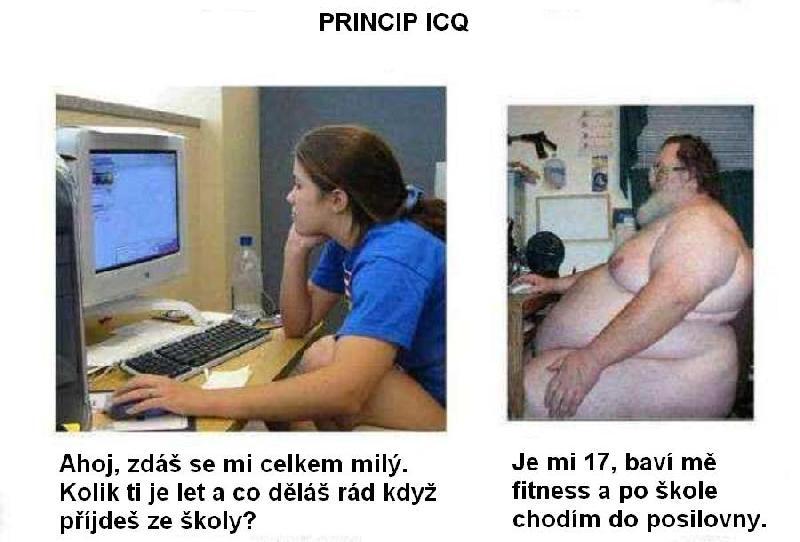 Princip ICQ