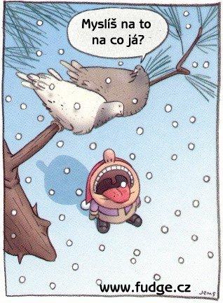 Chumelí se chumelí, padá snížek bílý...