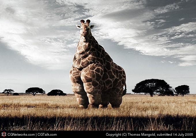 Obezní žirafa
